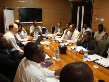 Advising during the Darfur peace negotiations